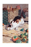 Cat with Apples Prints by Randolph Caldecott