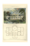 Greek Villa Print by Richard Brown