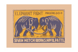 Elephant Fight Prints