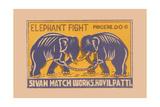 Elephant Fight Prints