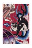 Curtain Cat Poster