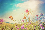 Beautiful View in Summer Flower (Forest of Flowers ) Posters by  ilolab