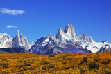 The Magnificent Mountain Range - Mount Fitzroy in Patagonia, Argentina. Summer Sunny Noon Photographic Print by  kavram