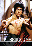 Bruce Lee Fight Tin Sign Tin Sign