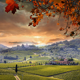 Chianti Vineyard Landscape in Tuscany, Italy Photographic Print by  extravagantni