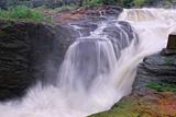 Murchison Falls, Uganda Print by Oleg Znamenskiy