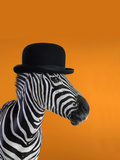 Zebra Wearing Black Top Hat Photographic Print by Brad Wilson