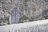 Ancient Door by Cobblestone Street; Tallinn; Estonia; Europe Print by  Nosnibor137