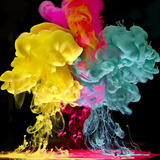 Images from Aqueous Series Photographic Print by Mark Mawson