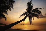 Sunset on Hat Sai Ri Beach Photographic Print by Richard Taylor