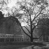 Berkeley Square Photographic Print by Kurt Hutton