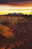 The Olgas (Kata Tjuta) Mountains at Sunset Photographic Print by Maurizio Rellini