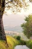 Countryside near Moie at Sunset Photographic Print by Maurizio Rellini