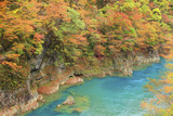 River in Dakigaeri Valley, Akita Prefecture Photographic Print by Mamoru Muto/Aflo