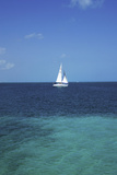 Sail Boat at at the Resort Town of Cancun on the Caribbean Coast of Quintana Roo on the Yucatan Pen Photographic Print by Mark D Callanan