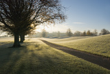 Mount Juliet Golf Course Covered in Frost Photographic Print by Design Pics / Millan Knapik