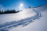 Snow Track of a Backcountry Skier in Bavarian Alps Fotografiskt tryck av Olaf Broders