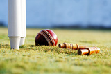 Partial View of the Cricket Stumps and a Ball Photographic Print by  Visage