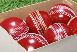 Close-Up of Cricket Balls Photographic Print by  Visage
