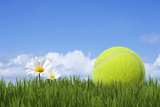 Tennis Ball Photographic Print by Andrew Dernie