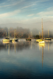 Windermere at Water Head Photographic Print by Kendal Based Freelance Photographer
