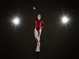 Female Gymnast on Balancing Beam. Photographic Print by Mike Harrington