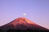 Mount Fuji and Full Moon, Shizuoka Prefecture Photographic Print by  SHOSEI/Aflo