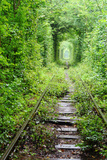 Tunnel of Love Photographic Print by  tverkhovinets