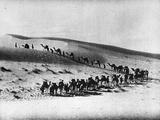 Desert Journey Photographic Print by Henry Guttmann