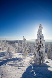 Lapland Finland Photographic Print by  Molka