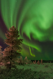 More Northern Lights. Photographic Print by Kind regards, Huggy's pics