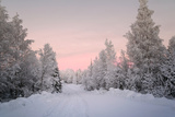 Winter Landscape in Lapland Photographic Print by  udvarhazi