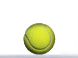 Tennis Ball on White Photographic Print by Adrianna Williams