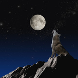 Wolf Howling at Moon Photographic Print by John Lund