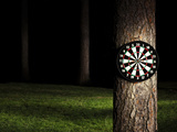 Dartboard in Forest at Night Photographic Print by Jan Stromme