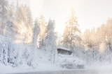 Hut near Water and Misty Forest in Winter Fotografisk trykk av  Risto0