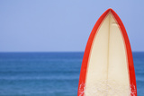 Surfboard by Sea Photographic Print by Alex Bramwell