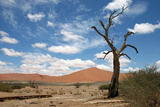 Sossuvlei.Namibia Photographic Print by  benshots