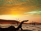 Dead Valley in Namibia at Dark Photographic Print by Andrushko Galyna