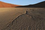 Dead Vlei Namib Desert Namibia Prints by  Nosnibor137