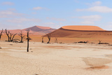Deadvlei Panorama Photographic Print by Grobler du Preez