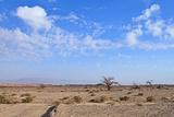 Desert Landscape Photographic Print by  Olexandr