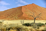 Vast Dune at Sossusvlei Namib Naukluft Park Namibia Photographic Print by  photogallet