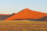 Grass, Oryx and Dune Landscape near Sossusvlei, Namibia Photographic Print by Grobler du Preez
