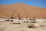 Namib Desert Photographic Print by  Twentytwo