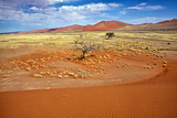 View from the Une 45 near Sossusvlei Namibia Africa Photographic Print by  photogallet