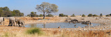 Okaukeujo Waterhole Panorama 2 Photographic Print by Grobler du Preez