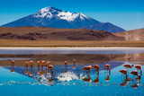 Bolivian Altiplano Photographic Print by Andras Jancsik