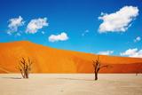 Namib Desert, Sossusvlei, Namibia Photographic Print by  DmitryP