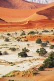 Namib Photographic Print by Andrushko Galyna